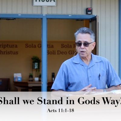 Shall we Stand in God's Way?